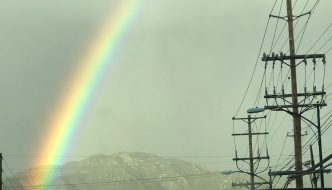 Holy Rainbow, Batman!